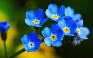 100 природних чудес України