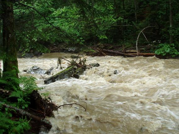 Після дощів Зубрівка перетворюється у грязьовий потік, що зносить на своєму шляху усі перепони. Джерело ілюстрації: Руслан Жирак