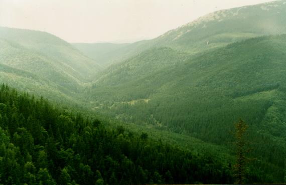 Долина ріки Зубрівка, по якій планується прокласти нову дорогу. Якщо даний проект зреалізується, то ця світлина буде справжнім раритетом. Джерело ілюстрації: Андрій М. Заморока