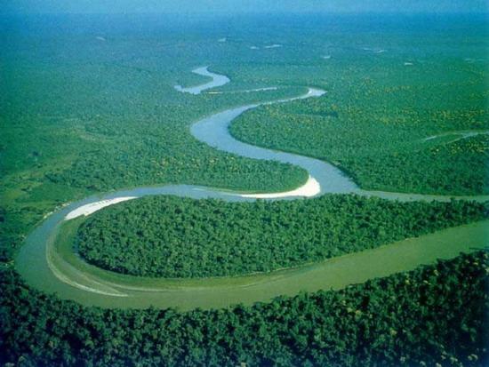 Амазонка - дім для двох сотень цихлід
