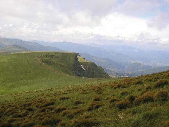 Ознакою альпійського поясу є рудуваті куртини Ситника трироздільного (Juncus trifidus L.), г. Близниця, Свидівецький масив (світлина Руслана Жирака)