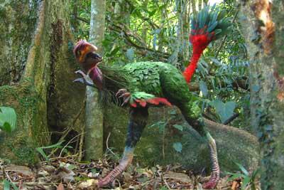 Каудиптерикс Зої (Сaudipteryx zoui) - одна із найвдаліших реконструкцій
