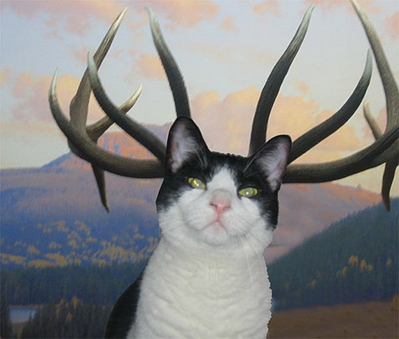 Навіть сяк-так припасовані у Photoshop оленячі роги коту, можуть викликати зацікавленість у людей із вразливою психікою. Чим не чупакабра?
