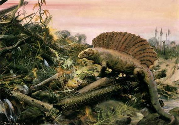 У кінці пермського періоду цілковито вимерли деревовидні плауноподібні та звірозубі ящери Диметродони (Dimetrodon Cope, 1878). Джерело:http://www.fossilshk.com