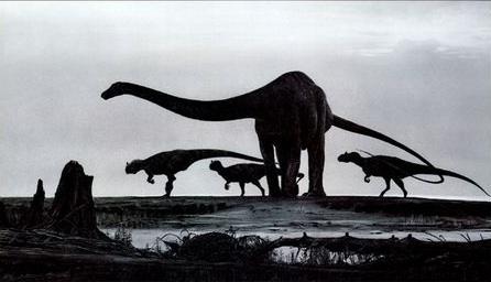 diplodocus-3.jpg