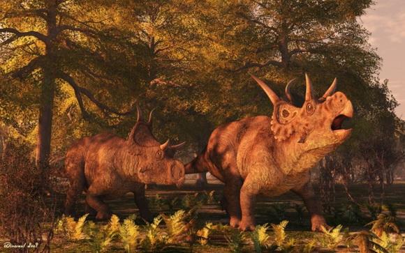 Незвичний вигляд був у Дияволоцератопса Ітана (Diabloceratops eatoni Kirkland et De Blieux, 2010), який отримав свою назву за рогоподібні вирости на щиті. Джерело ілюстрації: http://www.renderosity.com