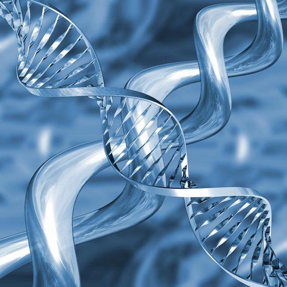 ДНК - спадкова молекула живих організмів на Землі