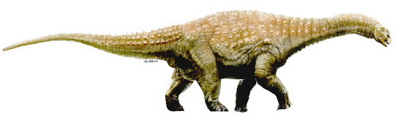 Діамантозавр Матильди (Diamantinasaurus matildae Hocknull, White, Tischler, Cook, Calleja, Sloan et Elliott, 2009). Джерело: http://www.en.wikipedia.org