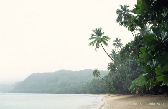 """Узбережжя Фіджі, саме тут знімали еротичний фільм """"Повернення у блакитну лагуну"""". Джерело: http://www.blomnahr.nl"""