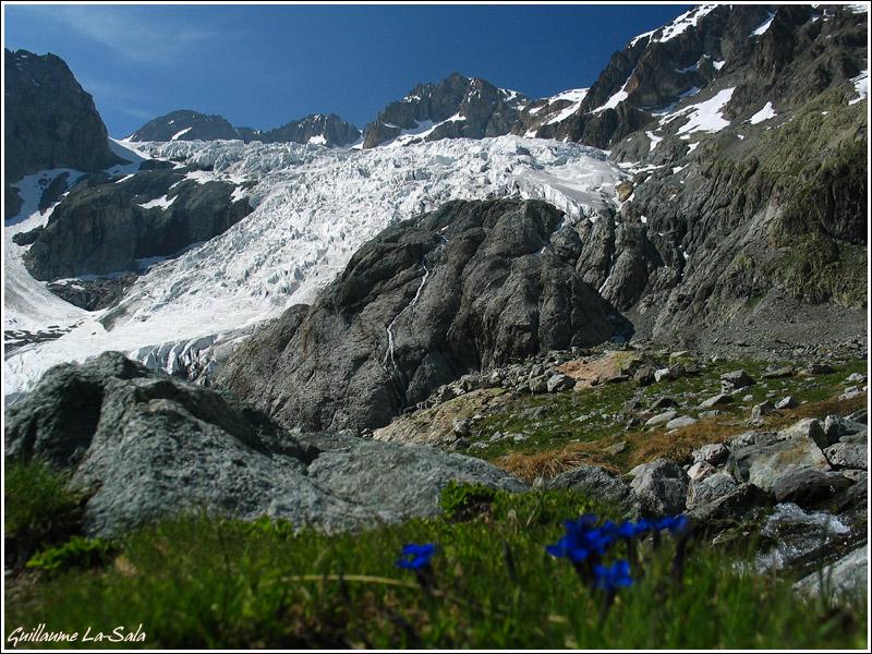 glacier_blanc22.jpg