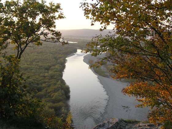 http://www.naturalist.if.ua/wp-content/limnytsya_naturalist_if_ua.jpg