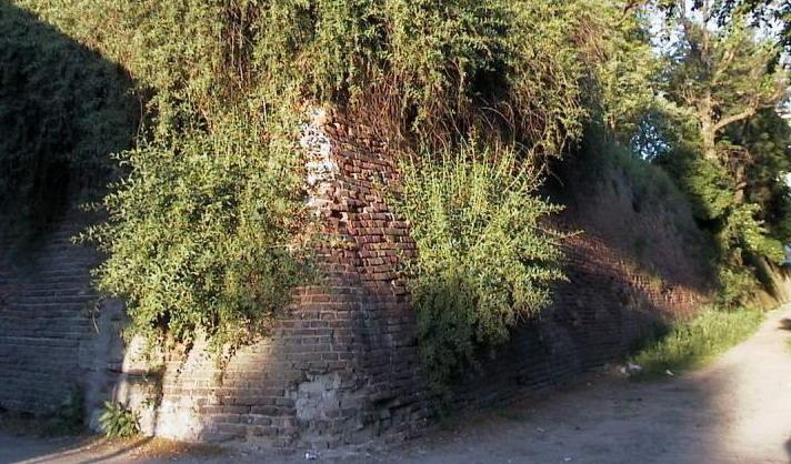 Це раритетне фото міських мурів Станіславова, порослих чагарниками. Зараз Фортечний Провулок і мури відреставровані і перетворені в сквер.