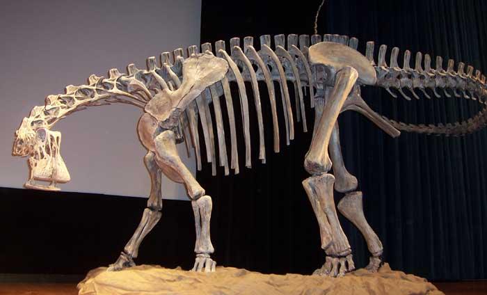 Реконструкція скелету Ніґерзавра