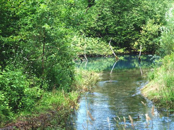 Карстове озеро у с. Озерце (світлина Василя Маланюка)