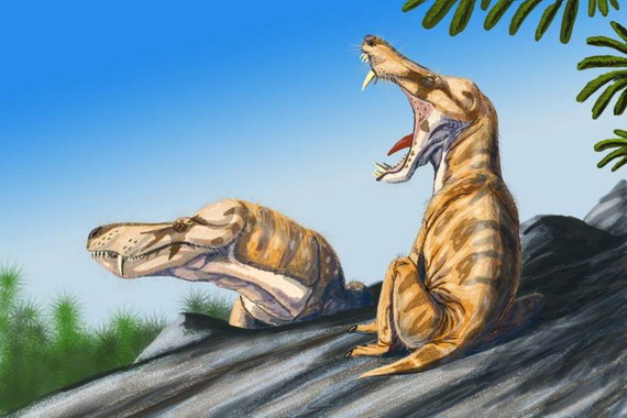 Химерні напів ссавці, напів рептилії Простероґнатуси (Pristerognathus) населяли Землю у тріасовому періоді