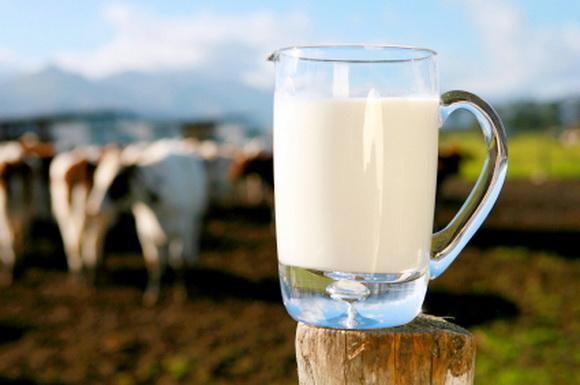 В Украине не ввезли 20 тонн ГМО молока