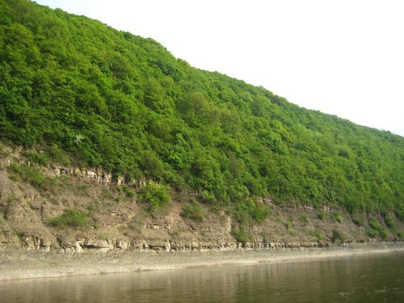У Дністровському каньйоні збереглась ще неторканою дика природа