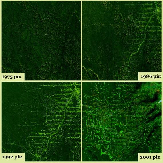 Динаміка рубок тропічних лісів у Рондонії впродовж 1975-2001 років. Джерело ілюстрації: NASA