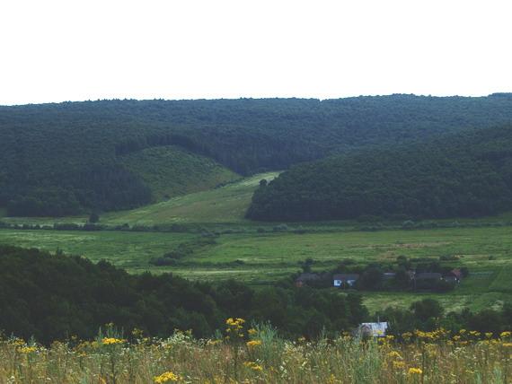 Село Озерце у долині річки Горожанка (світлина Василя Маланюка)