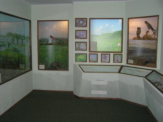 Степова зала музею