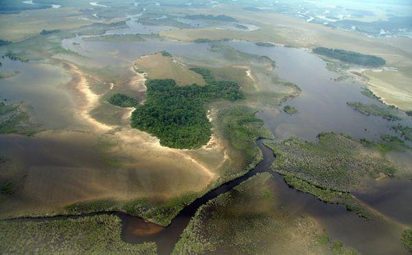 Заболочені долини Конґо