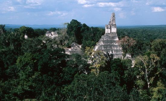 Колись величну цивілізацію Майя поглинув тропічний ліс. Руїни міста Тікаплано.