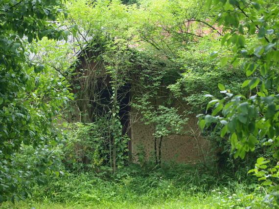 Більшість хат Озерця уже давно пустують (світлина Василя Маланюка)